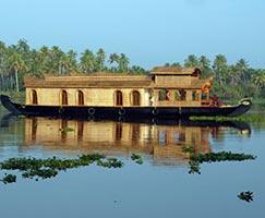 Munnar Holiday