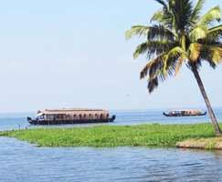 Munnar Vacation Package