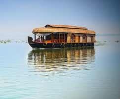 Munnar Vacation