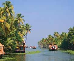 Munnar Tourism Honeymoon
