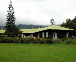Honeymoon Tour To Munnar