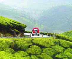 Tour Package In Munnar