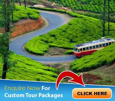 Munnar Tour Packages